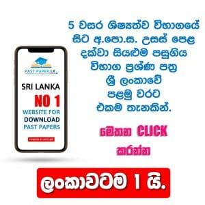 North West Provincial Final Term Test Paper Sinhala Grade 13