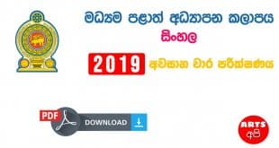 Advanced Level Central Provincial Final Term Test Paper Sinhala Grade 13 2019
